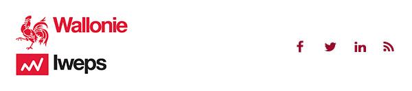 logo iweps et reseaux sociaux